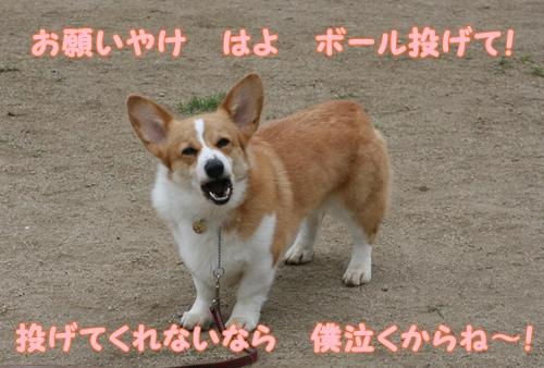 神戸遠征051