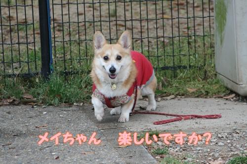 神戸遠征065