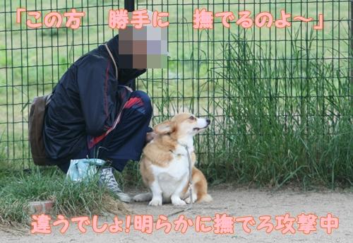 神戸遠征083