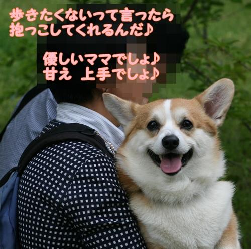 神戸遠征167