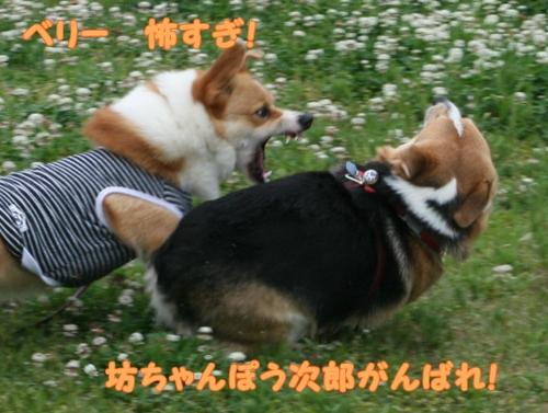 神戸遠征092-1