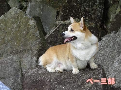 神戸遠征004