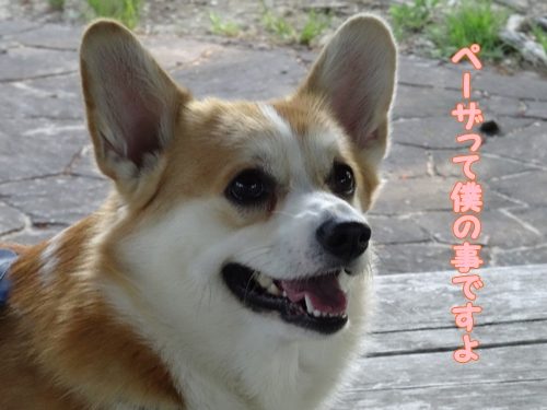 神戸遠征036