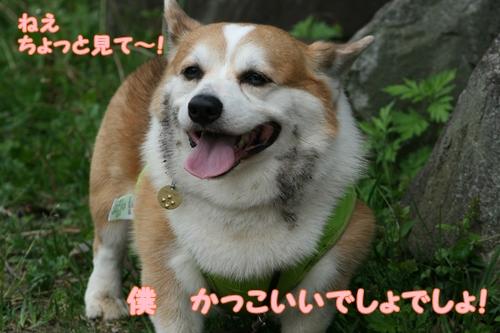 神戸遠征249