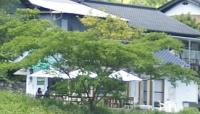 0606池川茶園5