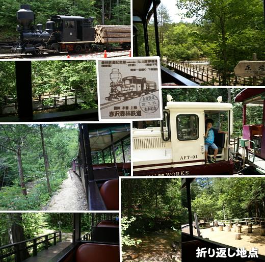 0721-4赤沢森林