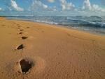 beachfoot1.jpg