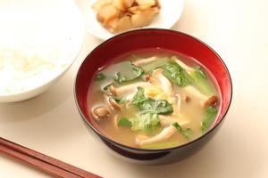 味噌汁は日本の食の基本。具材はなんでもいいという鷹揚さも見直されていい