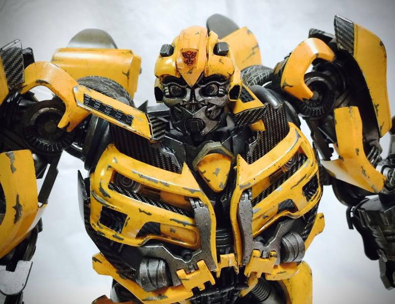 3A_bumblebee016.jpg