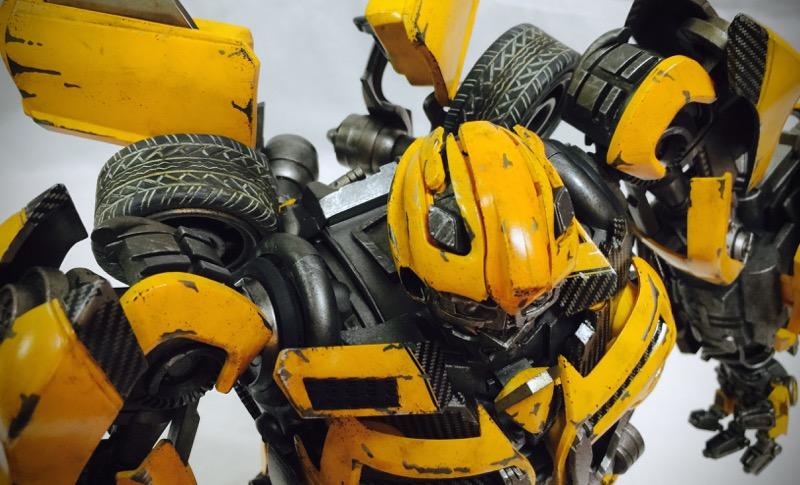 3A_bumblebee017.jpg