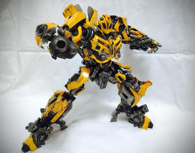 3A_bumblebee023.jpg
