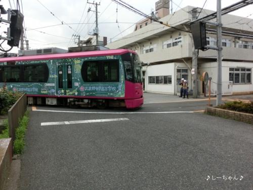AKB48劇場 #4_03