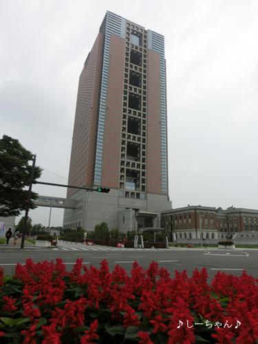 モモヤ_01