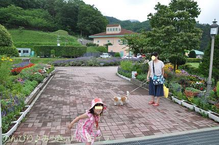 nagano201507003.jpg