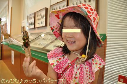 nagano201507006.jpg