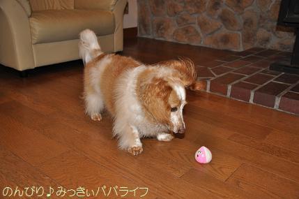 nagano201507032.jpg