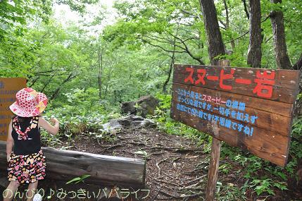 nagano201507100.jpg