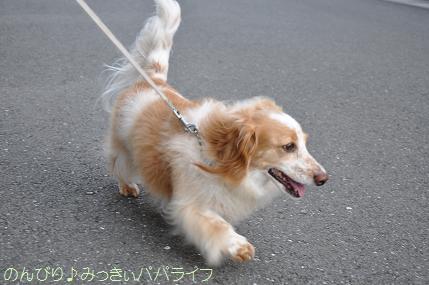 yakitori20150702.jpg