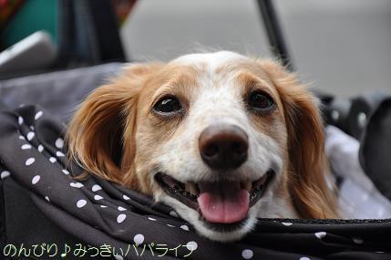 yakitori20150707.jpg