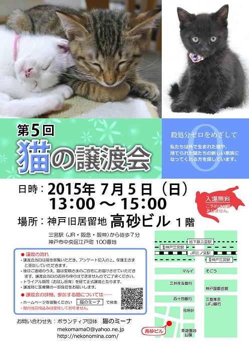 猫の譲渡会_7月