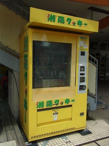 20140802湘南クッキー (2)
