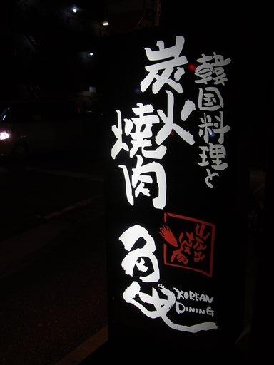 20140804亀 (4)