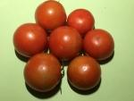 トマト150712