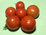 トマト150721