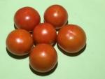 トマト150722