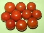 トマト150724