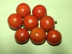 トマト150725