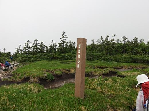 20150705-35.jpg