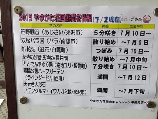 20150705-52.jpg