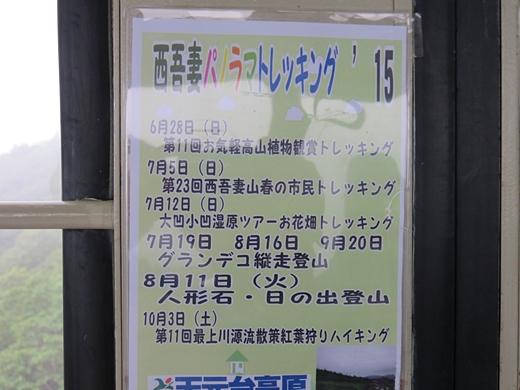 20150705-53.jpg
