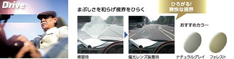 hoya eyepro drive