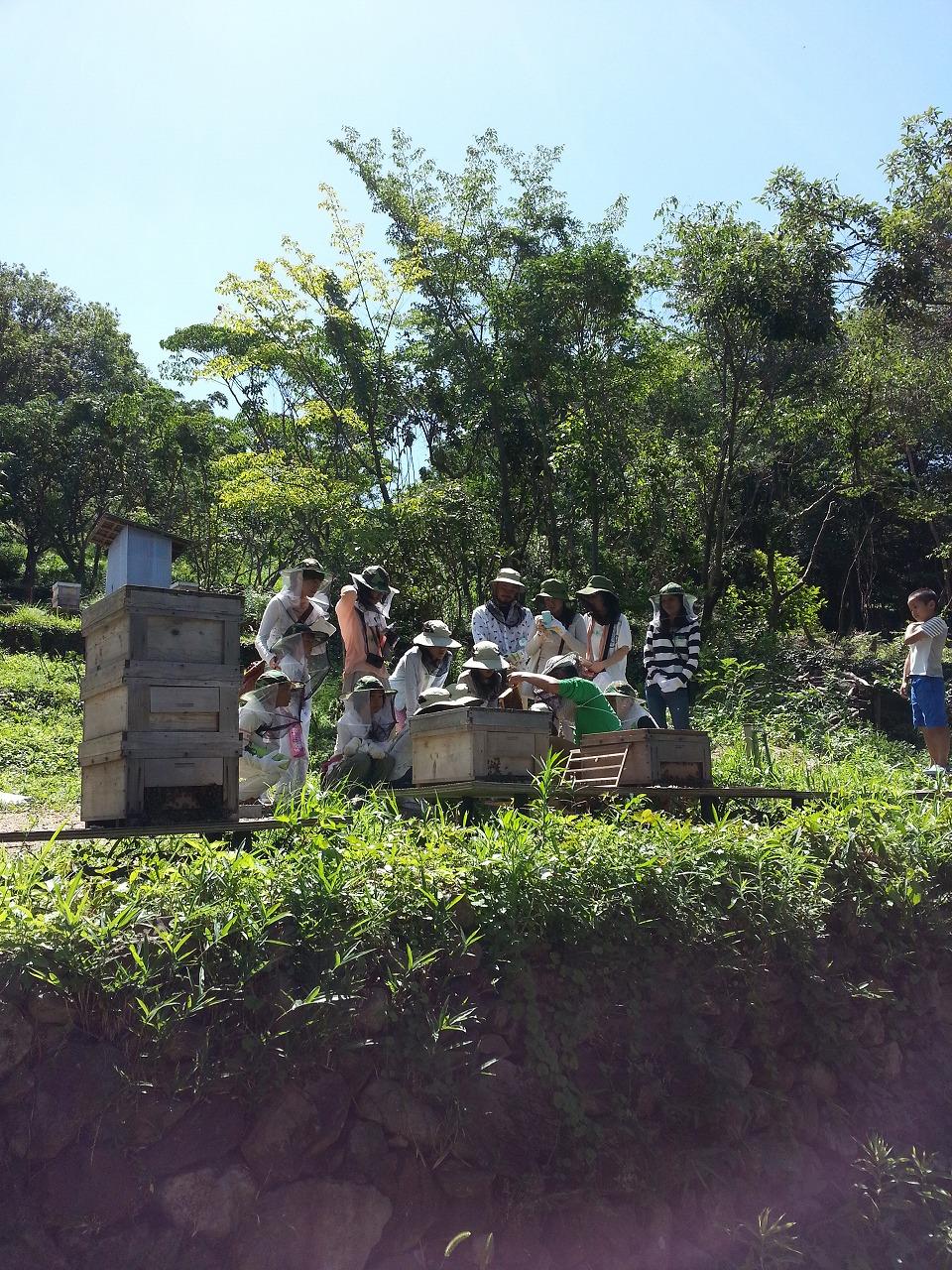 ミツバチ教室①