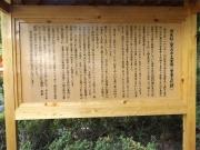 20150624上野五重塔3