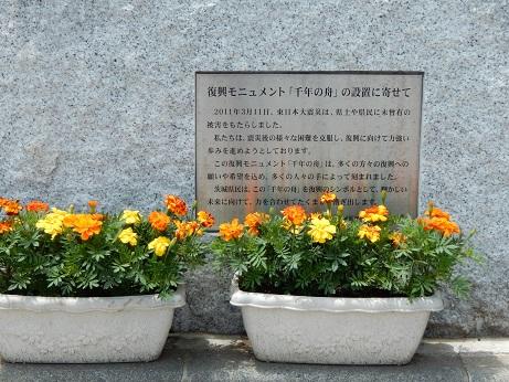 DSCN7838.jpg