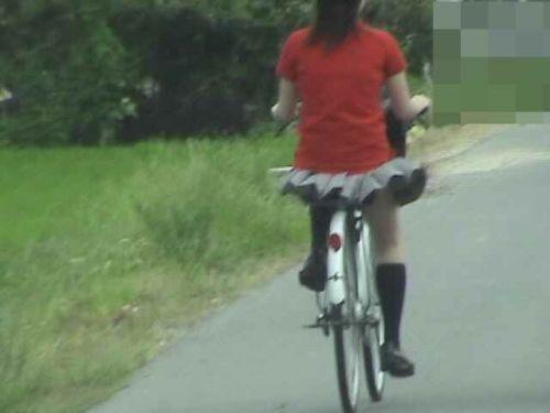 【三次画像あり】 JKがミニスカで自転車に乗ってる姿を後ろから眺めるの幸せすぎ♪ 56枚 part.13 No.39
