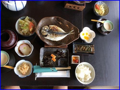 ドッグパレス食事 (9)