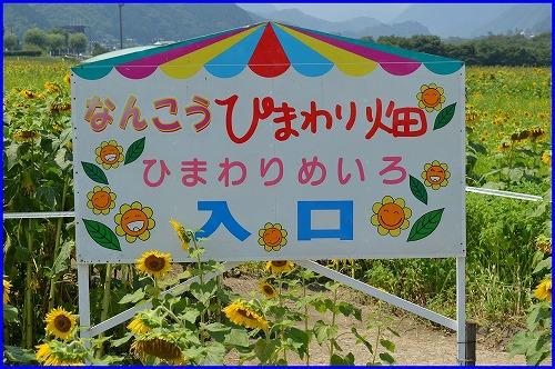 20150801あ (3)