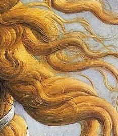ヴィーナスの髪