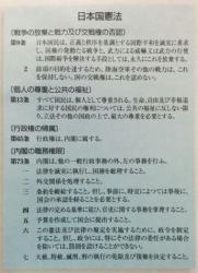 constitution 07