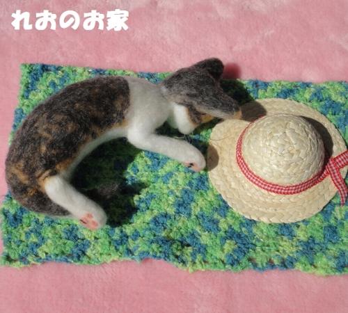 ねんねキジ猫3