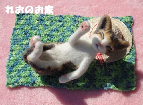 ねんねキジ猫1