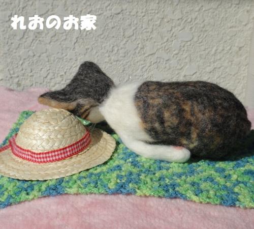 ねんねキジ猫2