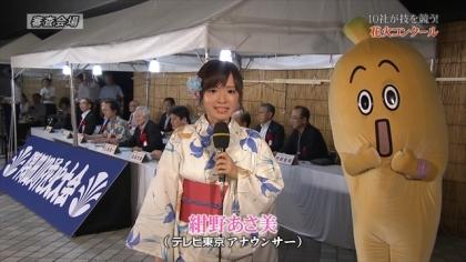 150725隅田川花火 (9)