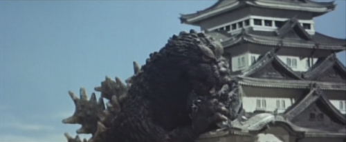 名古屋城天守閣に激突!