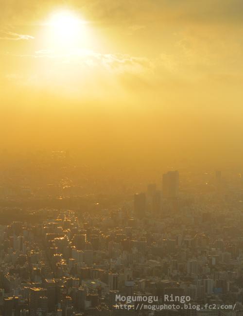 東京サンセット