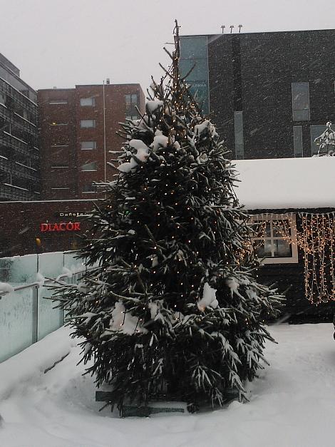 Joulukuusi Espoo Sello